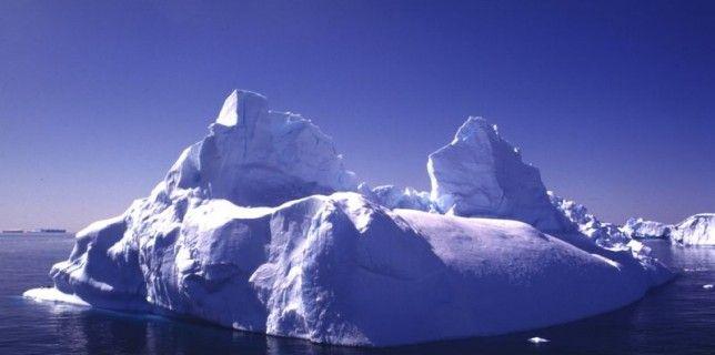 ecologie antartique