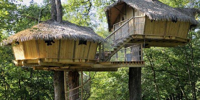 box cabane arbre